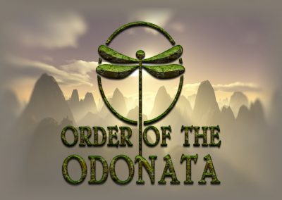 order-of-the-odonata-1